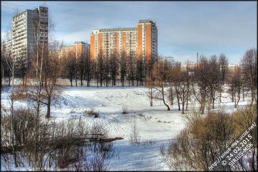 Бирюлёвский дендропарк, 24.02.2015